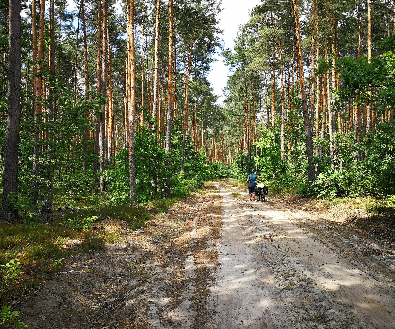 La Pologne du Sud au Nord : Topo et Traces GPS